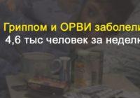 В Воронежской области гриппом и ОРВИ заболели 4,6 тыс человек за неделю