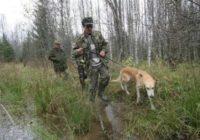 Сезон охоты на пушных зверей откроется в области 28 октября