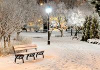 Синоптики рассказали, какая зима ждёт воронежцев