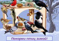 Покорми птиц зимой