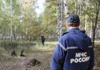 Участились случаи поиска граждан, пропавших в природной среде