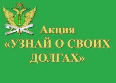 С начала года в праве выезда за рубеж ограничены более 300 жителей Нововоронежа и Каширского района Воронежской области